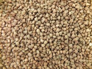 I love buckwheat because it looks like tiny pyramids.