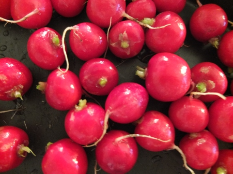 Radishes ready to get roasted.