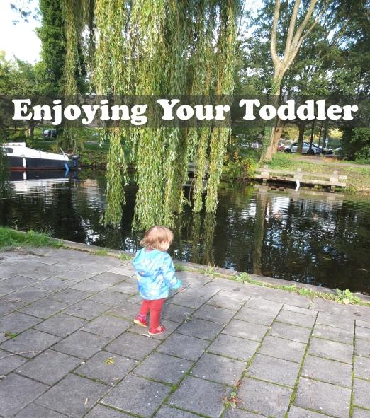 Enjoying your toddler